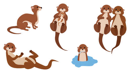Cute cartoon otter mascot set, funny water animal character vector Illustration on white background