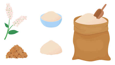 Buckwheat flour in a canvas bag with measuring scoop. Heap of grains and branch of flowering plant isolated on white background. Gluten free food vector illustration in cartoon simple flat style. 向量圖像