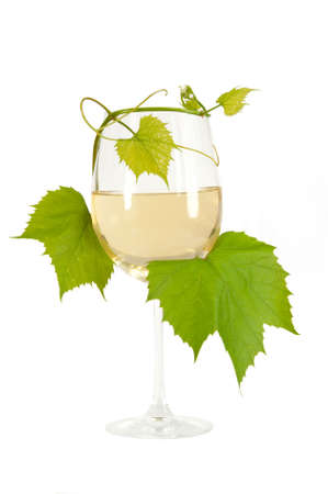 Isolatet glass of a white wine entwined vines at white background Stock Photo - 14096278