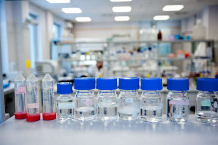 Chemicals reagents in a row in glass bottles placed at laboratory shelf  In background blurred chemical laboratory  photo