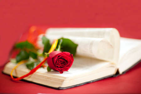stories: Love story book concept  Red rose with hatband at opened book with heart shape pages  Red background