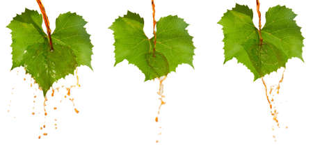 Red wine and leafs Stock Photo - 14607294