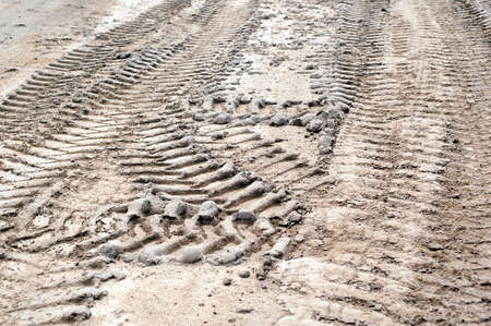 Tire tracks print in the dry mud photo