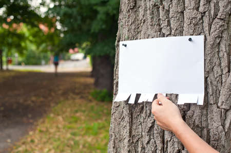 Hand picking a part of blank announcement pinned on a tree  photo