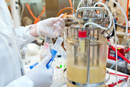 Taking sample from biotechnological bioreactor in microbiological laboratory