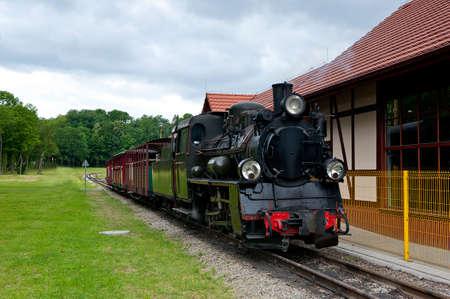 narrowgauge: narrow-gauge railway locomotive at station Stock Photo