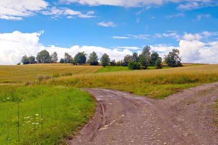 Strada attraverso i campi di campagna a Bobr River Valley, Bassa Slesia, in Polonia in giornata di sole.