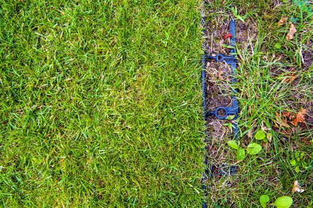 Lawn with new and old turf with a border edging in the right.