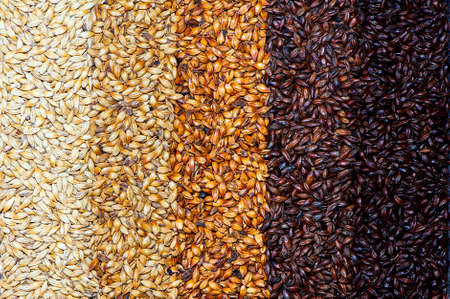 A gradient background of brewing dark and light malt grains