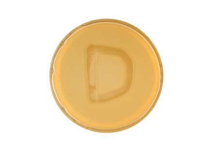 Alphabet made of bacteria escherichia coli culture on LB agar plate - letter d 写真素材