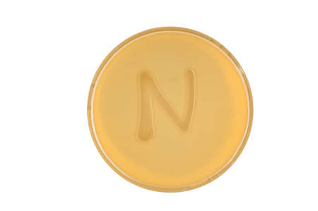 Alphabet made of bacteria escherichia coli culture on LB agar plate - letter n