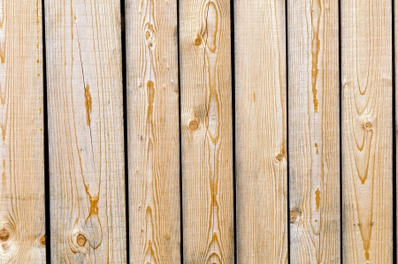 picea: Close up of spruce  picea abies  boards