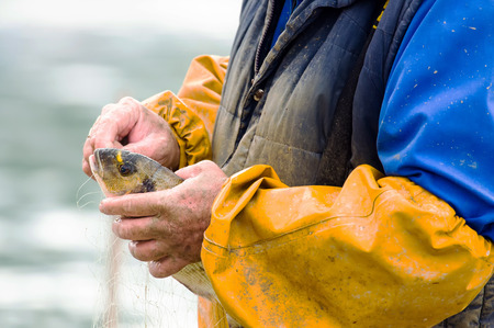 Fisherman is removing a fish from the fishing net. Stock Photo