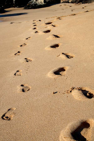 footprints in the sand Stock Photo - 10928302