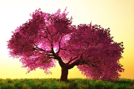 Misteriosas Flores de cerezo japonés Jardín de dibujos animados en 3D de render Foto de archivo