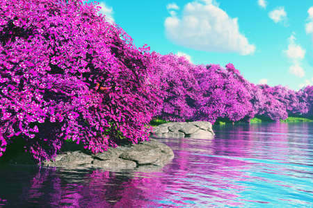 Mysterious Cherry Blossoms Japanese Garden at Lake 3D render Stock Photo
