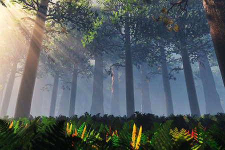 Deep Forest 3D render Stock Photo - 17168603