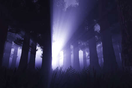 Supernatural Activites in Deep Dark Night Forest 3D render