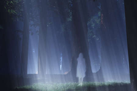 Magic Forest with Japanese Ghost Yurei 3D artwork Banque d'images