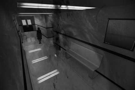 Scary Horror Hospital Corridor 3D artwork