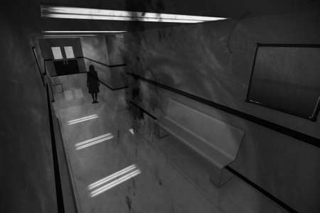 Scary Horror Hospital Corridor 3D artwork
