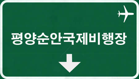 pyongyang: Pyongyang North Korea Airport Highway Sign 2D Illustration