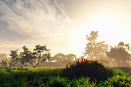 lightrays: Wonderful Fairy Tale Magical Summer Field 3D Illustration Artwork