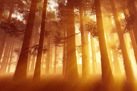 lightrays: Mysterious Fairy Tale Deep Magic Forest 3D Illustration Artwork