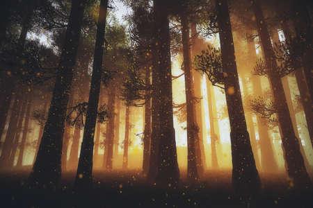 Mysterieuze Fairy Tale Deep Magic Forest 3D illustratie Artwork Stockfoto