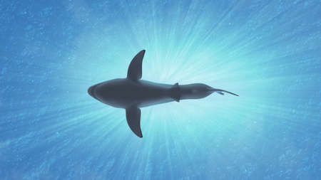 carcharodon: The Great White Shark in the Ocean Side View 3D Illustration