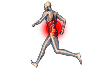 lower: Lower Spine Pain in Human Body Transparent Design 3D Illustration