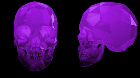 Crystal Skulls Illustration Purple