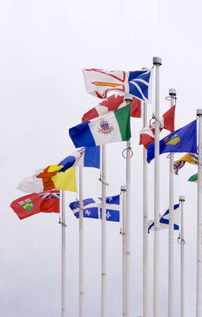 Various flags on flagpoles on white background