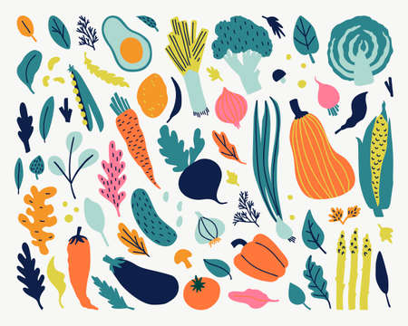 Vector food set for your design. Cute doodle illustration with vegetables isolated on white background on white background. Banque d'images - 123510182