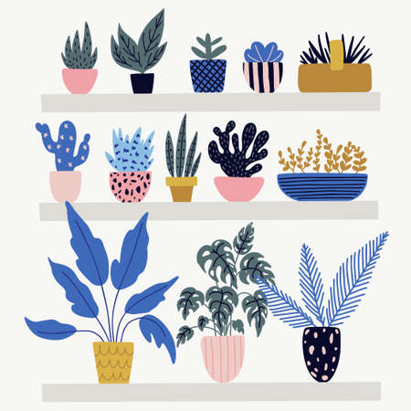 Vector illustration of gardening elements. Beautiful object with home plants. Banque d'images - 123510189