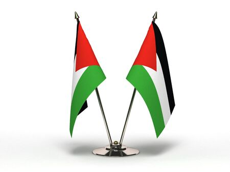 Miniature Flag of Palestine Stock Photo - 13078108