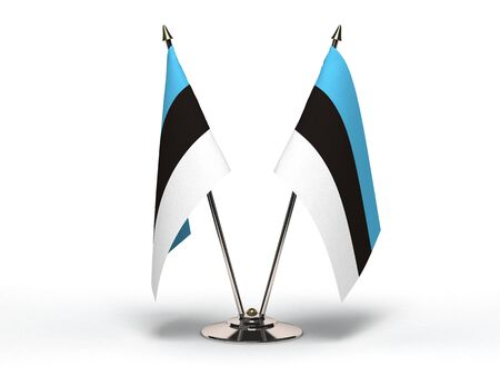 Miniature Flag of Estonia  Stock Photo - 15498656