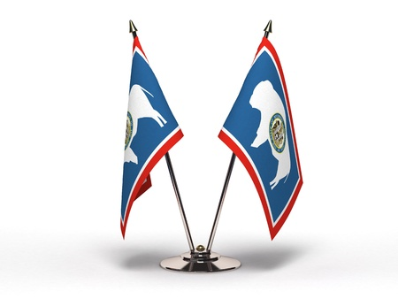 Miniature Flag of Wyoming  Stock Photo - 16564521