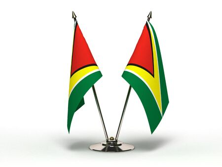 Miniature Flag of Guyana  Isolated with clipping path Stock Photo - 16804208