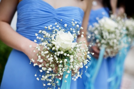 Row of bridesmaids with bouquets at wedding ceremony Stock Photo - 10826085