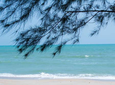 cha: cha am beach