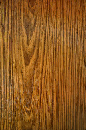 texture: The band years of tree wood ,texture wood