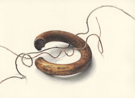 scrap metal: Illustrazione di un pezzo di metallo arrugginito pezzo e alcuni vitigni filiformi, contro off-sfondo bianco