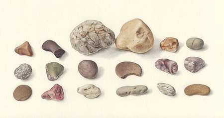 Illustration of 2 stones and a group of pebbles in a symmetrical composition, displaying distinct individual features  diversity of colors, shapes, texture, on off-white background