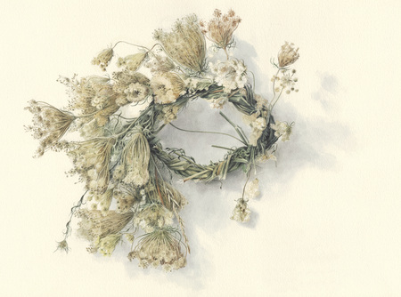 queen anne   s lace: Illustration of wildflowers braided in a wreath, against off-white background Stock Photo
