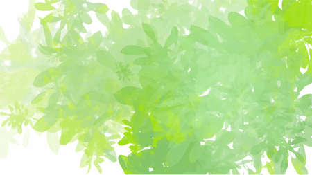 Green watercolor leaves background, vector. Banque d'images - 167037482