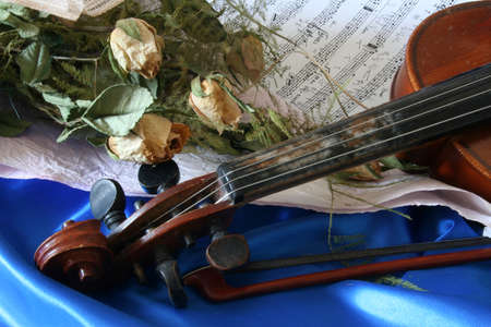 sere: Old violin and sere roses on blue satin