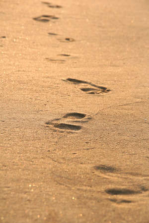 foot prints: Foot prints on the beach sand on sunrise