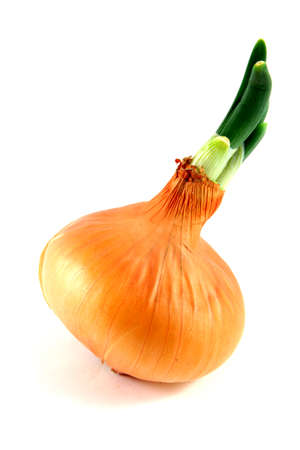 garniture: Natural healthy-food onion isolated on white