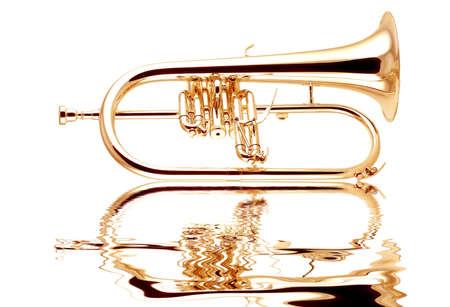 flugelhorn: Silver fluegelhorn with mouthpiece isolated on white